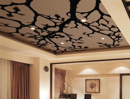 Тканевые натяжные потолки с фотопечатью